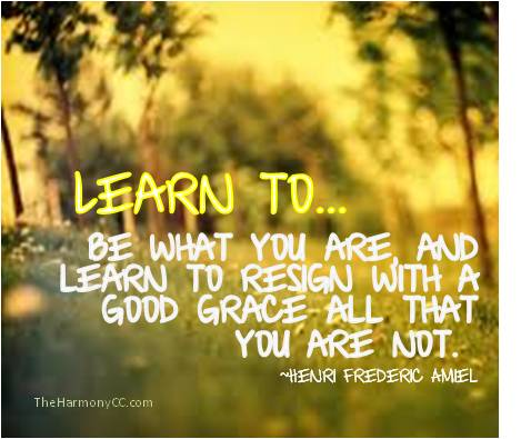 LearnTo